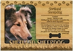 Shetland Sheepdog Engraved Wood Picture Frame Magnet