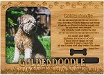 Goldendoodle Engraved Wood Picture Frame Magnet