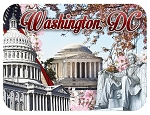 Washington D.C. Cherry Blossom's Collage Photo Fridge Magnet