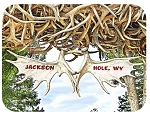Jackson Hole Wyoming Antler's Fridge Magnet
