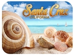 Santa Cruz Beach California Fridge Magnet