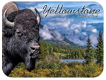 Yellowstone National Park with Bison Fridge Magnet
