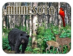 Minnesota with Deer and Bear Fridge Magnet