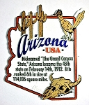 Arizona Outline Montage Fridge Magnet Design 4