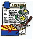 Arizona Square Montage Fridge Magnet