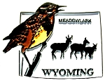 Wyoming State Outline with Meadowlark Fridge Magnet