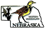Nebraska State Outline with Western Meadowlark Fridge Magnet