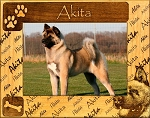Akita Laser Engraved Wood Picture Frame
