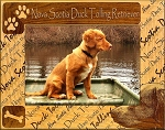 Nova Scotia Duck Tolling Retriever Laser Engraved Wood Picture Frame