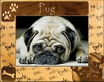 Pug Laser Engraved Wood Picture Frame