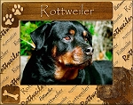 Rottweiler Laser Engraved Wood Picture Frame