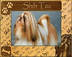 Shih Tzu Laser Engraved Wood Picture Frame (5 x 7)