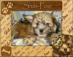 Shih-Poo Laser Engraved Wood Picture Frame