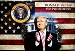 Donald Trump 45th President of the United States Fridge Magnet