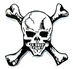 Skull and Bones Fridge Magnet