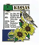 Kansas State Montage Fridge Magnet Design 5