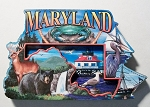 Maryland Montage Artwood Fridge Magnet Design 27