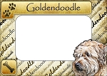 Goldendoodle Picture Frame Fridge Magnet