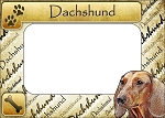 Dachshund Picture Frame Fridge Magnet