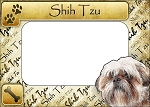Shih Tzu Picture Frame Fridge Magnet
