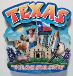 Texas Montage Artwood Magnet Design 16