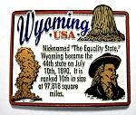 Wyoming State Outline Montage Fridge Magnet Design 4