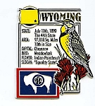 Wyoming The Equality State Montage Fridge Magnet