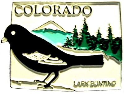 Colorado State Outline with Lark Bunting Fridge Magnet