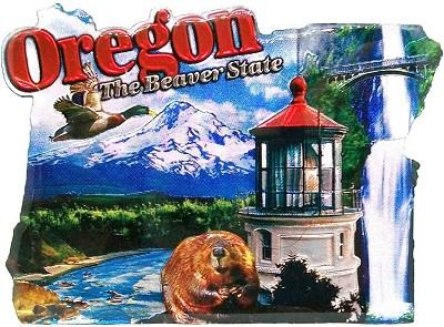 Oregon the Beaver State Jumbo Artwood Foil Fridge Magnet
