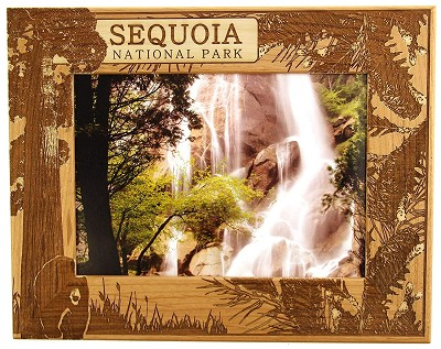 Sequoia National Park with Bear Laser Engraved Wood Picture Frame (5 x 7)